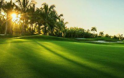 Sân Golf 36 Lỗ Chuyên Nghiệp